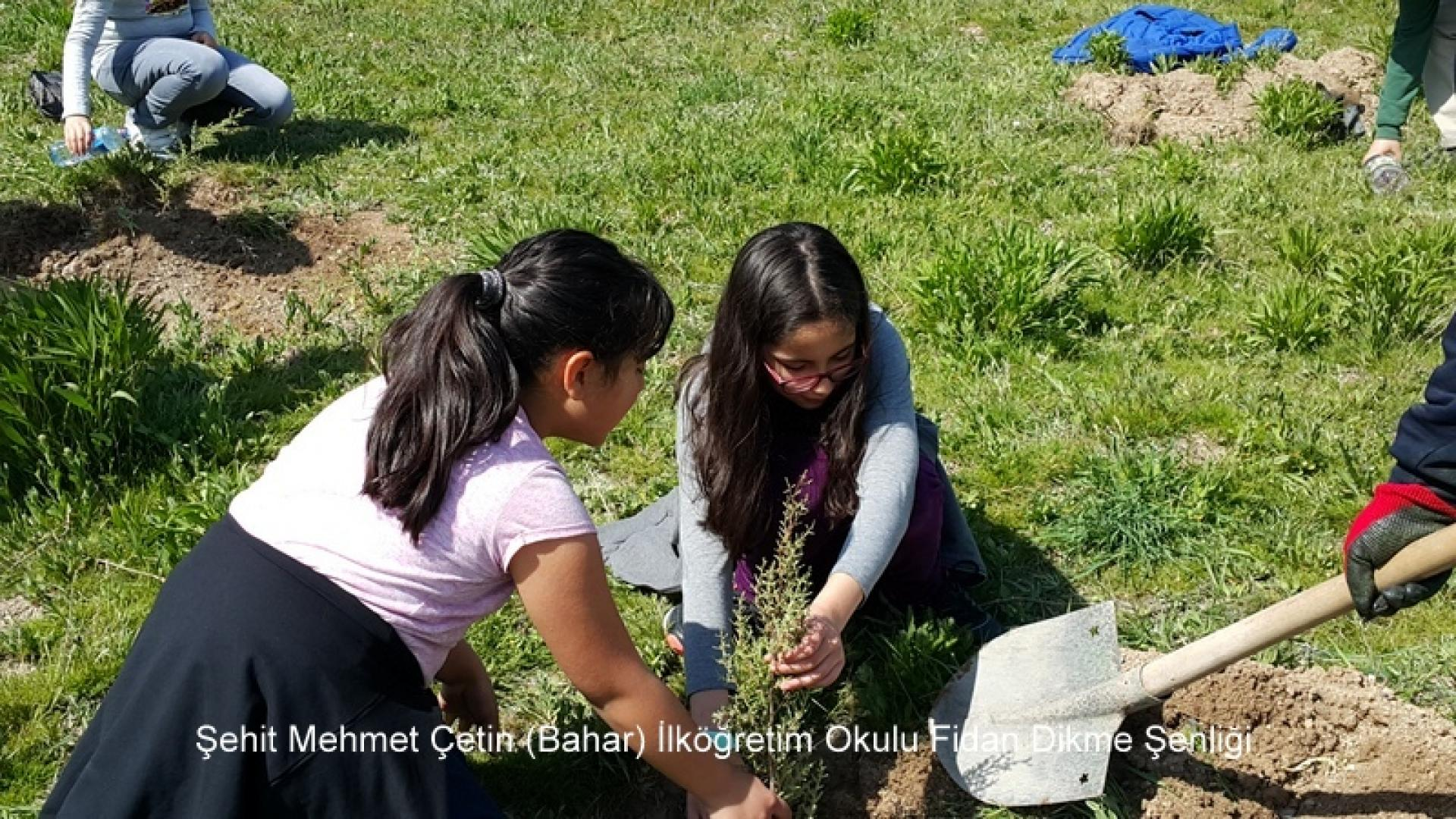 Şehit Mehmet Çetin İlkokulu Ağaç Dikme Şenliği 1523000125 587