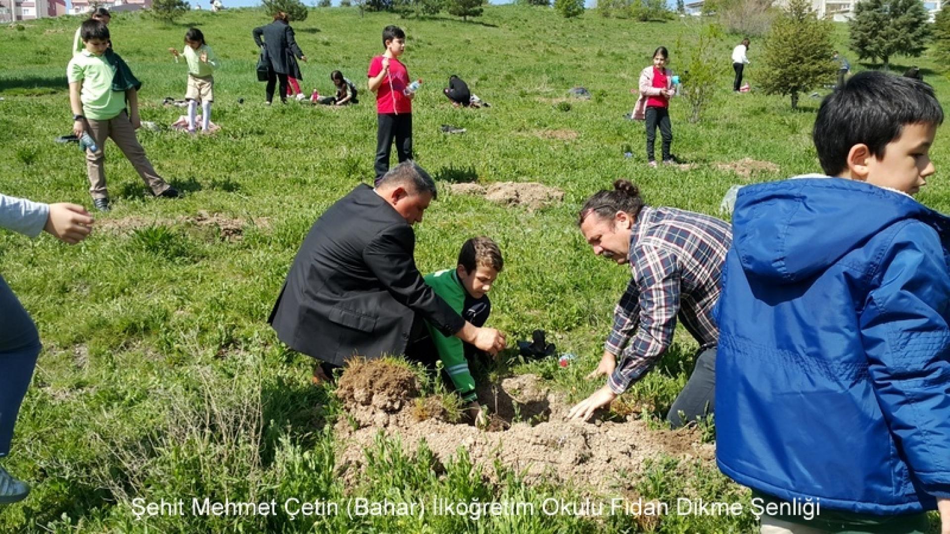 Şehit Mehmet Çetin İlkokulu Ağaç Dikme Şenliği 1523000127 911
