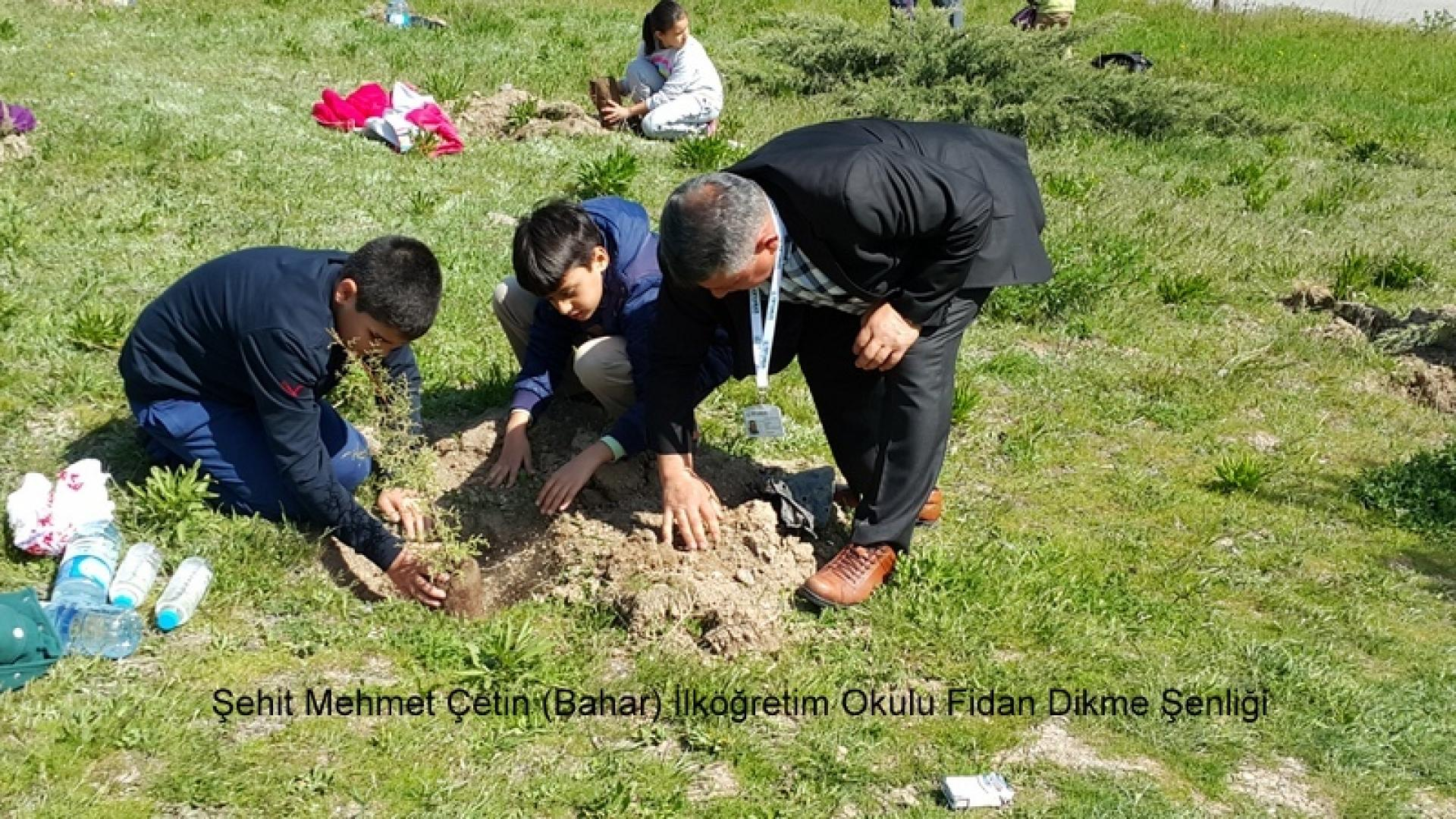 Şehit Mehmet Çetin İlkokulu Ağaç Dikme Şenliği 1523000129 1000