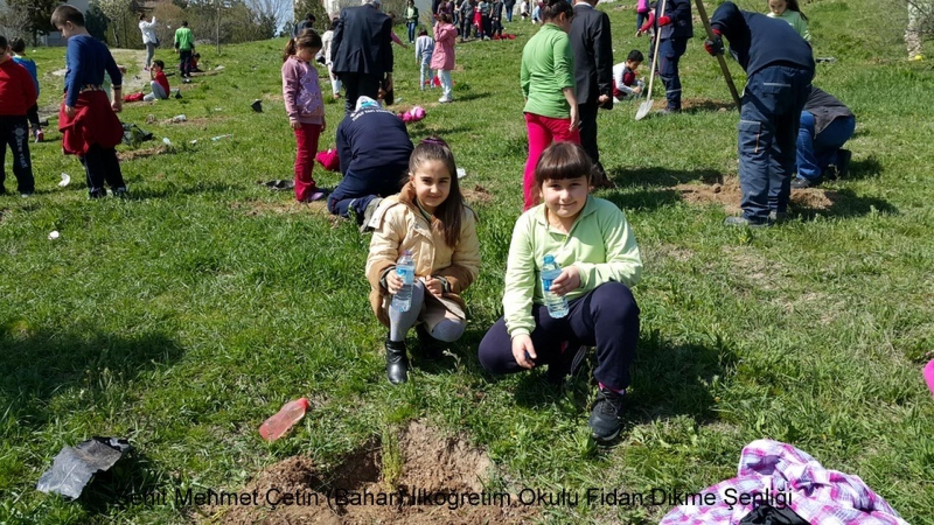 Şehit Mehmet Çetin İlkokulu Ağaç Dikme Şenliği 1523000131 381
