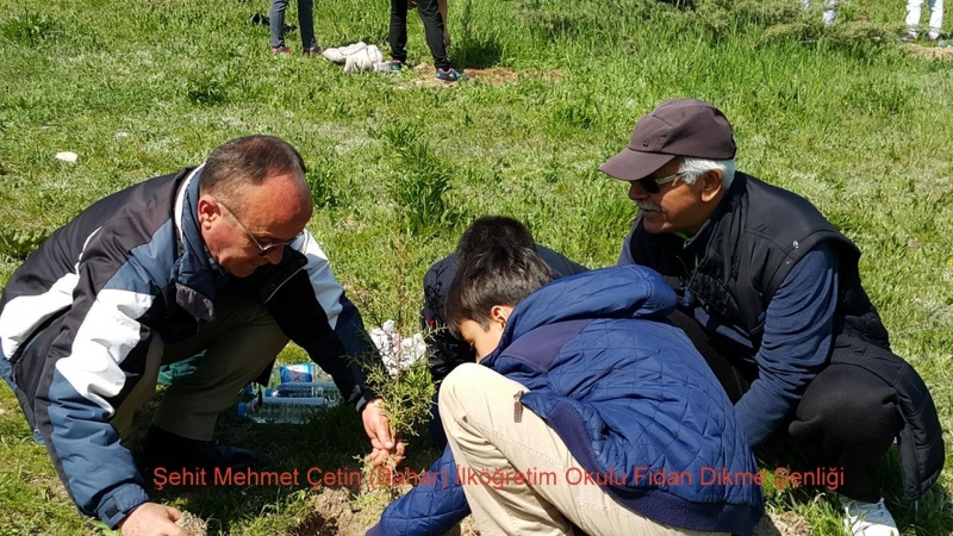 Şehit Mehmet Çetin İlkokulu Ağaç Dikme Şenliği 1523000132 692