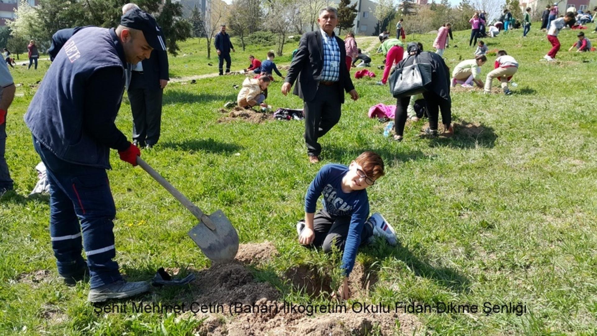 Şehit Mehmet Çetin İlkokulu Ağaç Dikme Şenliği 1523000133 966