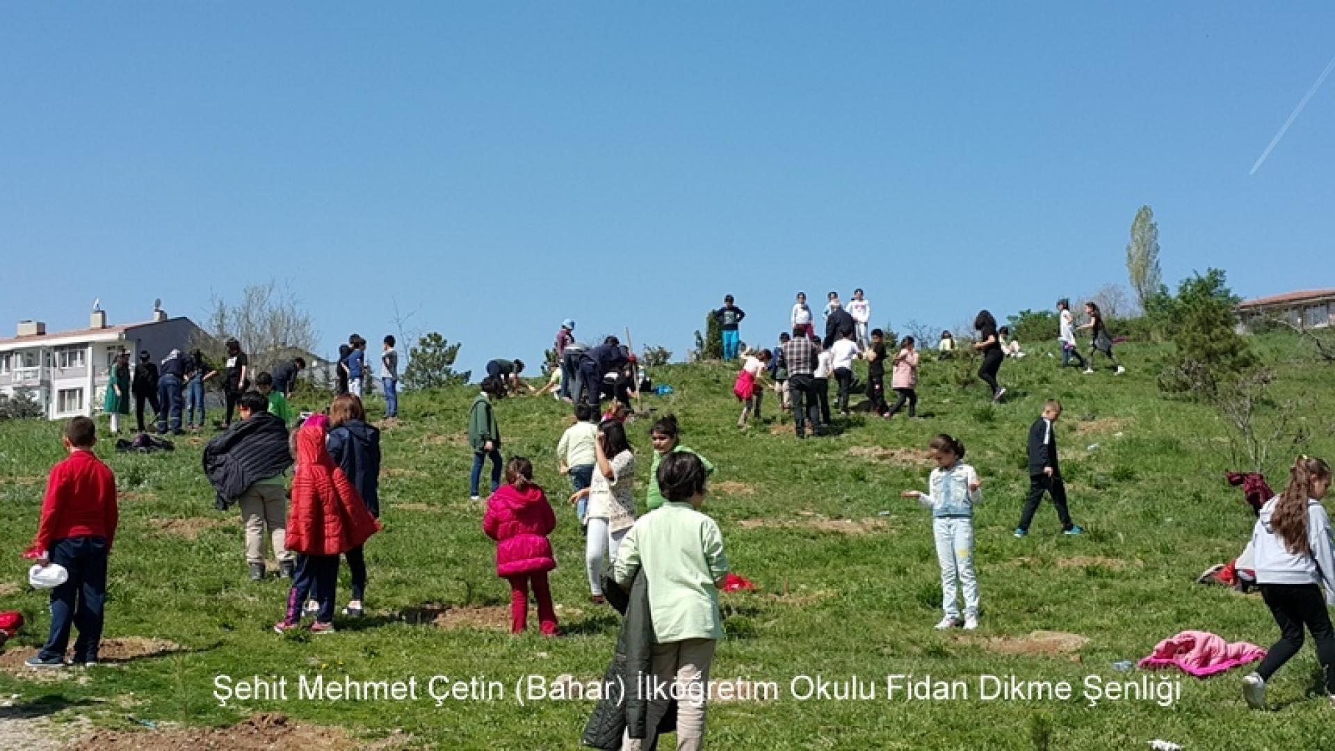 Şehit Mehmet Çetin İlkokulu Ağaç Dikme Şenliği 1523000134 763