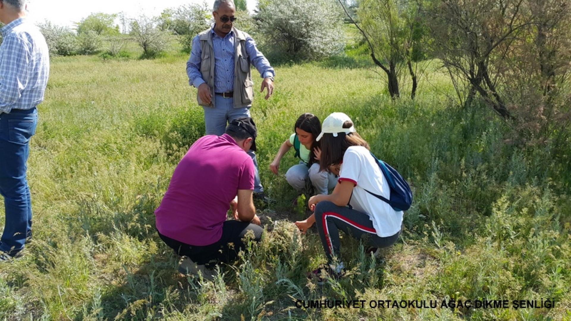 Cumhuriyet Ortaokulu Ağaç Dikme Şenliği 1524827276 154