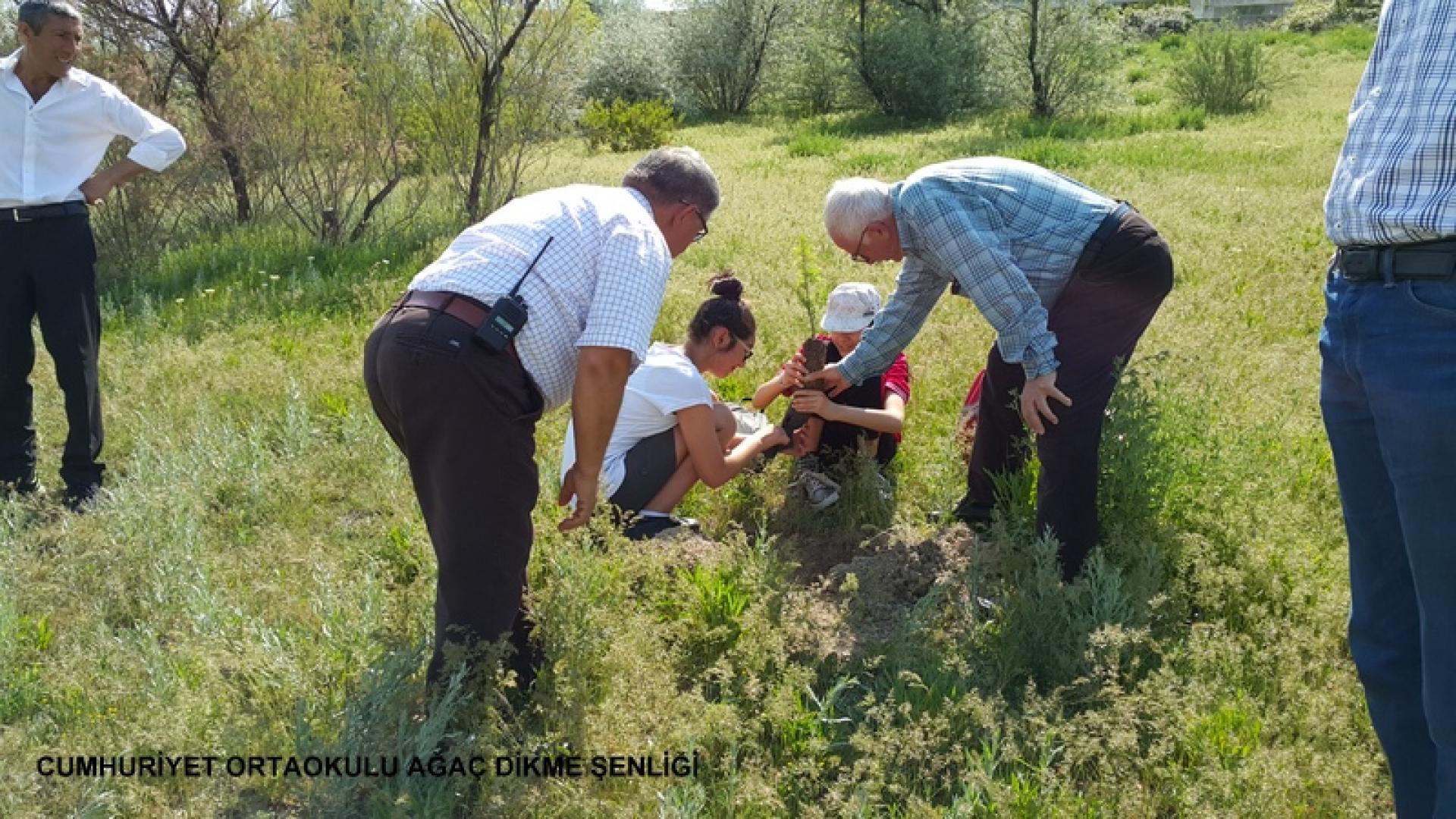 Cumhuriyet Ortaokulu Ağaç Dikme Şenliği 1524827280 186