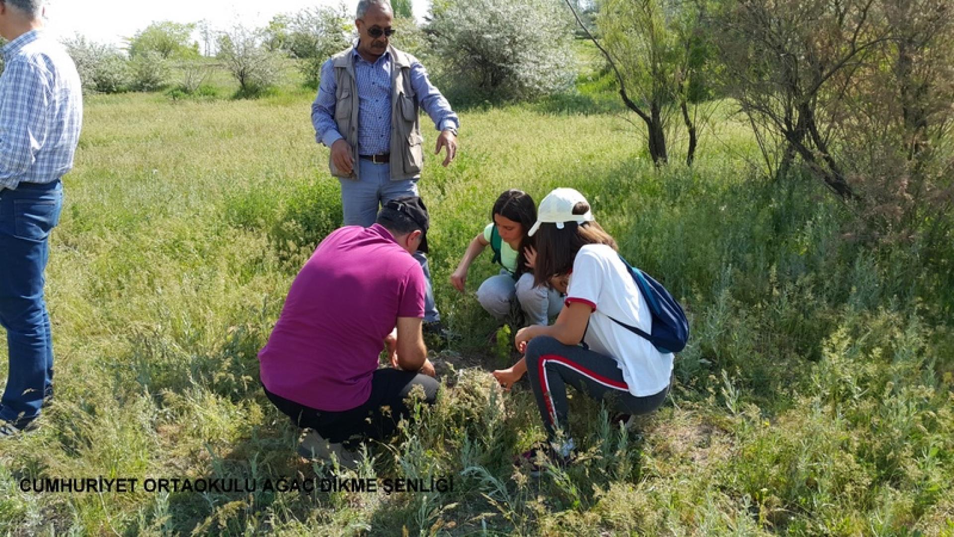 Cumhuriyet Ortaokulu Ağaç Dikme Şenliği 1524827709 61